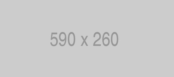 Pin Banner 590×260